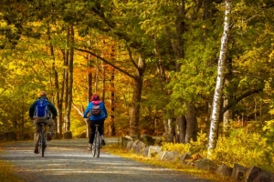 Cycling Improving Mental and Physical Wellness One Ride at a Time